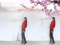 娟子广场舞《寂寞的人都有爱过的人》原创舞蹈 正背面演示