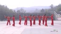 河南驻马店乐融之舞蹈队广场舞 紫色丫丫 表演 团队版