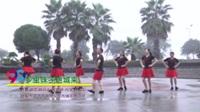 湖南省岳阳舞出青春健身队 乡里妹子进城来 表演 团队版