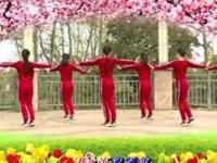 杨丽萍广场舞《姑娘姑娘》原创动感32步 正背面口令分解动作教学演示