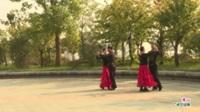 河南省信阳市潢川县志全舞蹈队广场舞  葬心 表演 团队版