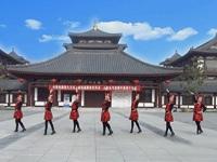 鑫舞飞扬慕颜广场舞队广场舞  牧羊曲 正背表演 团队版