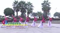 湖南省岳阳飞舞酷妈舞队 山谷里的思念 表演 团队版