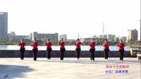 雪绒花广场舞 前世今生的轮回 表演 团队版