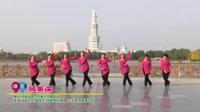 河南省周口市舞之灵舞蹈队广场舞  风筝误 表演 团队版