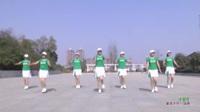 河南驻马店燕子舞蹈队广场舞 中国范 表演 团队版