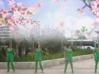 三亚迎宾广场舞《真心换真情》原创舞蹈 附正背面口令分解教学演示