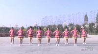 河南驻马店萃莉舞蹈队 广场style 表演 团队版