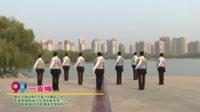 河南省焦作市春之韵舞蹈一队广场舞  一支梅 表演 团队版