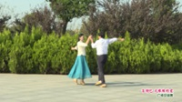 河南省信阳市体育舞蹈协会 杨开义 李道凤  吉特巴 火辣辣的爱 表演 双人版