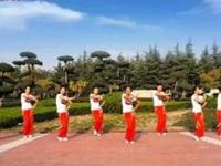 舞动旋律2007广场舞《站台+路灯下的小姑娘》原创舞蹈 口令分解动作教学