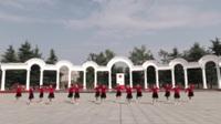 河南南召双梅健身舞蹈队广场舞 北江美 表演 团队版