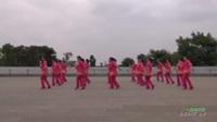 广东省湛江市遂溪县城月镇吉祥燕子健身舞队 一起走天涯 表演 团队版