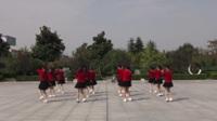 河南南召延玲舞蹈队广场舞 社会摇 表演 团队版
