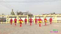 延津县齐村田园晚情广场舞一队广场舞  潇洒人生 表演 团队版