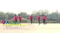河南平顶山杨艺曳步舞团 奔放的玫瑰 表演 团队版