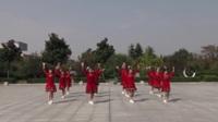河南南召延玲舞蹈队广场舞 超级舞林 表演 团队版