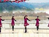 青儿广场舞《思念的牢》原创大众健身舞 正背面口令分解动作教学演示