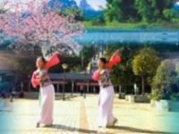 花想容广场舞《红豆红》原创舞蹈 正背面演示