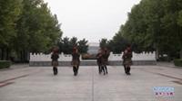 河南禹州草原舞动乾坤舞蹈精英队广场舞 我们好好爱 表演 团队版