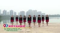 河南省焦作市龙源湖红姐广场舞  前世今生的轮回 表演 团队版