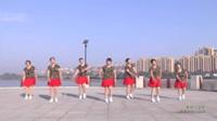 河南驻马店泌阳县盘古新城舞蹈队 真的不容易 表演 团队版