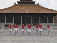 陈元光广场舞队广场舞 美丽中国 表演 团队版