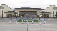 湖北黄梅大河开心姐妹广场舞队广场舞 美人吟 表演 团队版