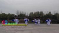 河南平顶山花蝶舞蹈队  健身秧歌 表演 团队版