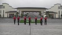 湖北黄梅王岭广场队广场舞 你是我的天籁 表演 团队版
