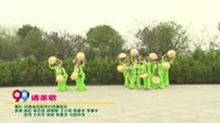 河南省信阳市心悦舞蹈队广场舞  请茶歌 表演 团队版