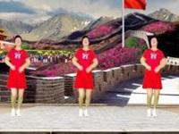 龙海追梦广场舞《最美的中国》编舞王广成 正背面演示