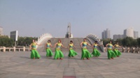 河南禹州山连民乐舞蹈队广场舞 孔雀公主 表演 团队版