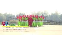 河南平顶山快乐阳光舞蹈队 大太阳 表演 团队版