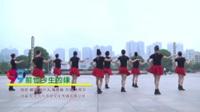 湖南娄底广场舞协会 前世今生的缘 表演 团队版