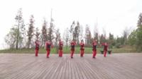 江西进贤中山社区星火舞蹈队1队广场舞 就是让你美 表演 团队版