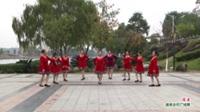 广西桂林灌阳县鹤龙老年协会舞蹈队广场舞  母亲 表演 团队版