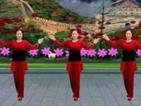 雪妹舞翩翩广场舞《好事样样来》原创新年舞 附正背面口令分解教学演示