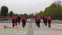 河南省南阳市99边庄社区舞蹈队广场舞  泉水叮咚 表演 团队版