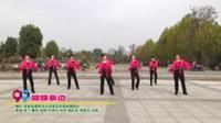 河南省南阳市白河南花样姐妹舞蹈队广场舞  蝴蝶泉边 表演 团队版