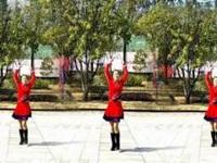 漓江飞舞广场舞《吉祥飞舞》原创64步新年舞 正背面口令分解动作教学演示