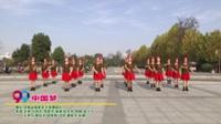 河南省南阳市天使舞蹈队广场舞  中国梦 表演 团队版