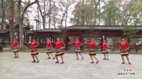 广西桂林市灌阳县文市镇水车同心舞蹈队广场舞  草原绿了 表演 团队版