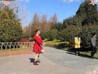 雨中阳光广场舞《吉祥飞舞》原创新年步子舞 附正背面口令分解教学演示