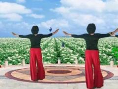 红叶健康快乐舞队《新疆亚克西》原创12步 团队正背面口令分解演示