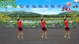 龙游红飞舞广场舞《自在美》编舞小霞 正背面演示