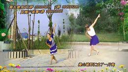 阿梅广场舞《山花朵朵开》原创舞蹈 正背面演示