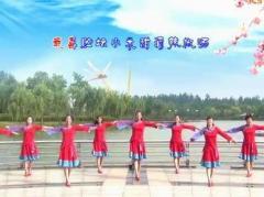 青儿广场舞《百合花姑娘》原创舞蹈 附正背面口令分解教学演示