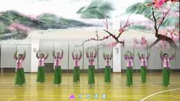 盛泽雨夜广场舞《桃花源》原创舞蹈 附正背面口令分解教学演示