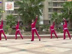 杨丽萍广场舞《爱上了瘾》原创热身健身舞 附正背面口令分解教学演示